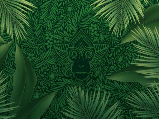 Spice Monkey | Huisstijl Ontwerp